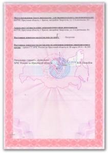 Лицензия Витязь-Т2